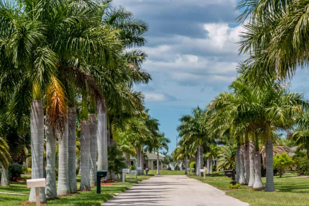 Cape Coral Property: What To Consider Before Investing