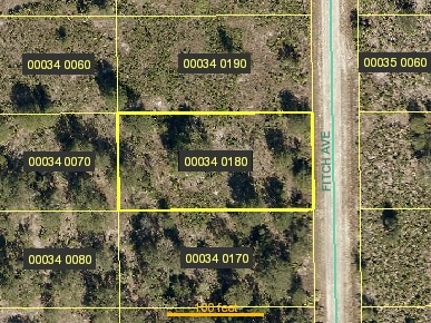 1011 Fitch AVE, Lehigh Acres, FL 33972